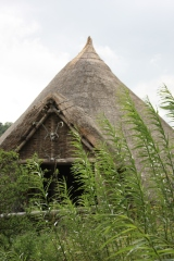 Replica Iron Age house