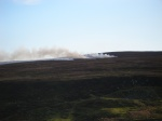 Moorland controlled burning
