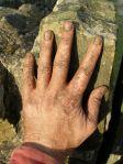 Hand of Peat