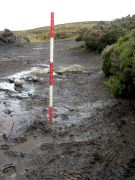 Waterlogged site