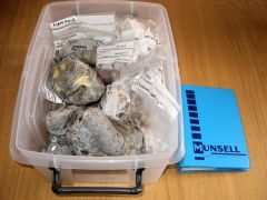 Lithics Raw Materials
