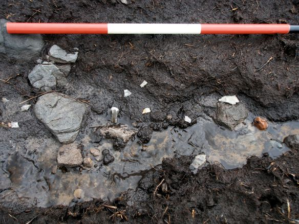 Mesolithic flints in a cut drainage channel | Scale: 0.2m units.